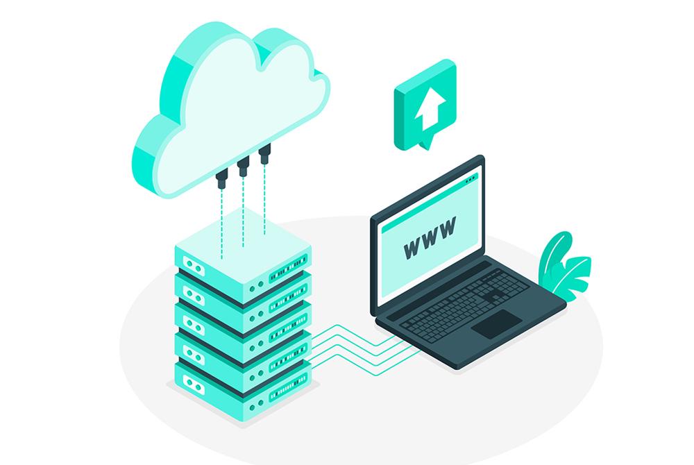 domain và hosting là gì